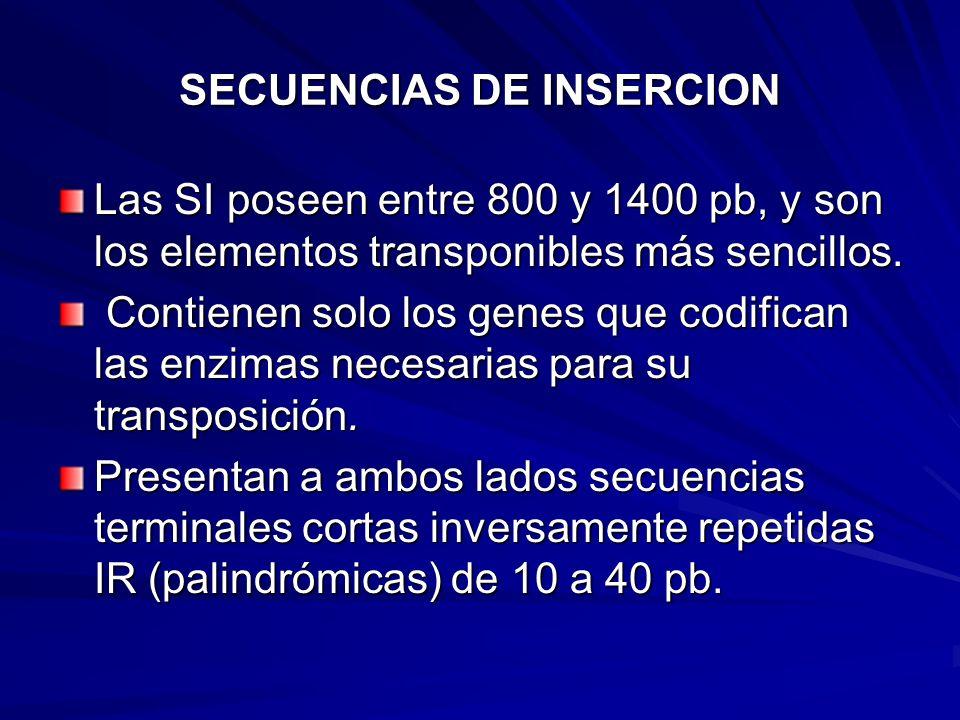 SECUENCIAS DE INSERCION Las SI poseen entre 800 y 1400 pb, y son los elementos transponibles más sencillos. Contienen solo los genes que codifican las