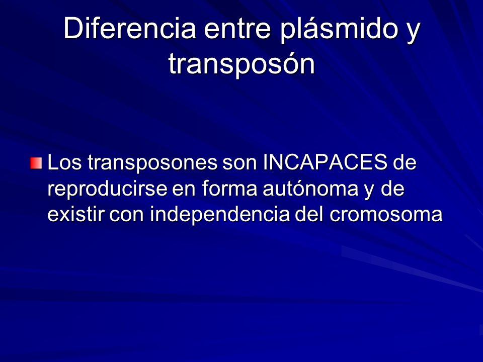 Diferencia entre plásmido y transposón Los transposones son INCAPACES de reproducirse en forma autónoma y de existir con independencia del cromosoma