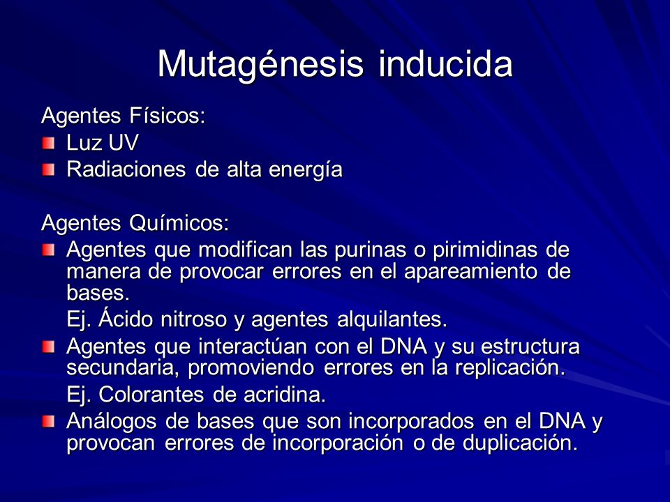 Mutagénesis inducida Agentes Físicos: Luz UV Radiaciones de alta energía Agentes Químicos: Agentes que modifican las purinas o pirimidinas de manera d
