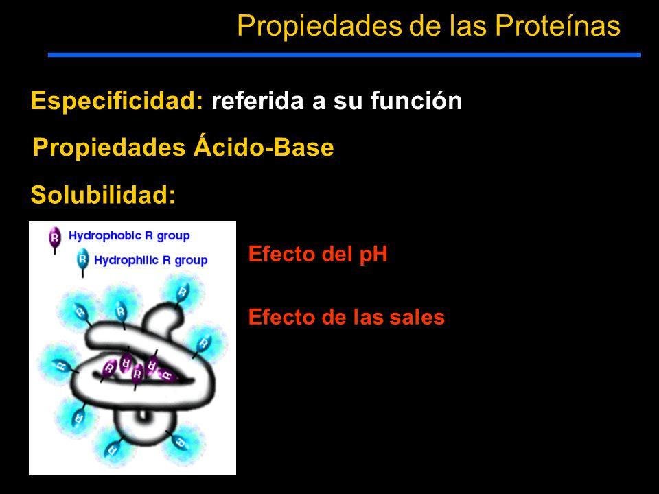 Propiedades de las Proteínas Especificidad: referida a su función Solubilidad: Efecto del pH Efecto de las sales Propiedades Ácido-Base