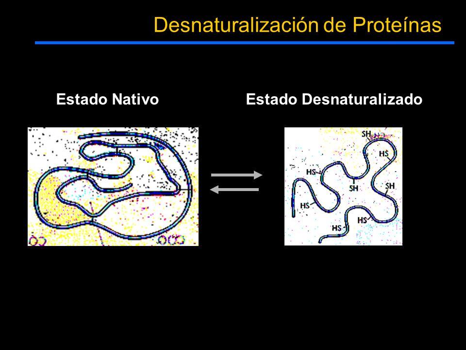 Estado NativoEstado Desnaturalizado Desnaturalización de Proteínas