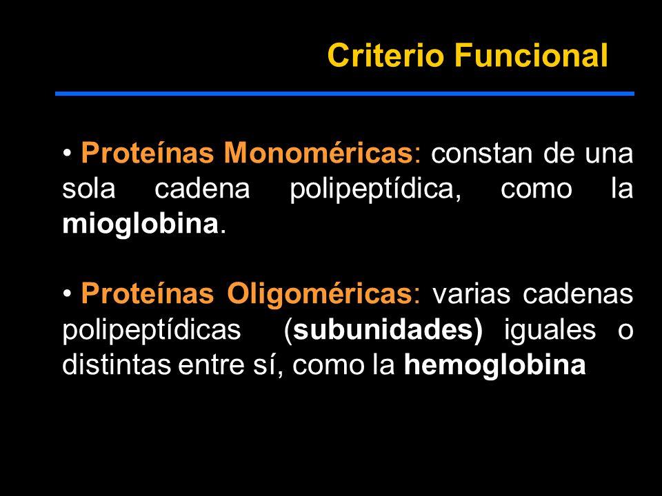 Proteínas Monoméricas: constan de una sola cadena polipeptídica, como la mioglobina. Proteínas Oligoméricas: varias cadenas polipeptídicas (subunidade