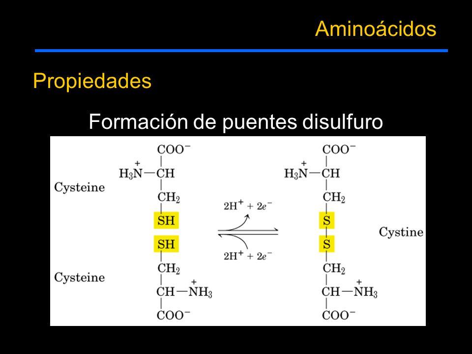 Propiedades Aminoácidos Formación de puentes disulfuro
