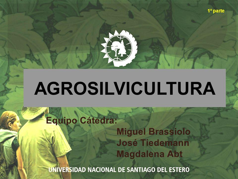 Equipo Cátedra: Miguel Brassiolo José Tiedemann Magdalena Abt AGROSILVICULTURA 1º parte