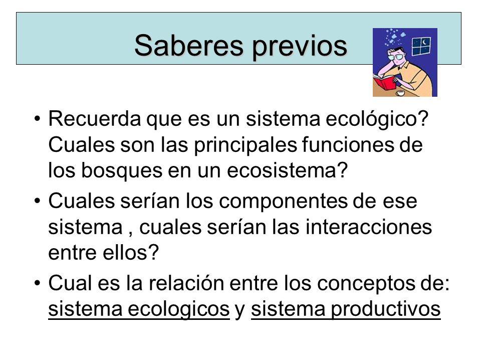 Saberes previos Recuerda que es un sistema ecológico? Cuales son las principales funciones de los bosques en un ecosistema? Cuales serían los componen