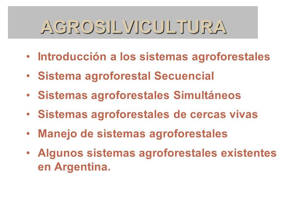 AGROSILVICULTURA Introducción a los sistemas agroforestales Sistema agroforestal Secuencial Sistemas agroforestales Simultáneos Sistemas agroforestale