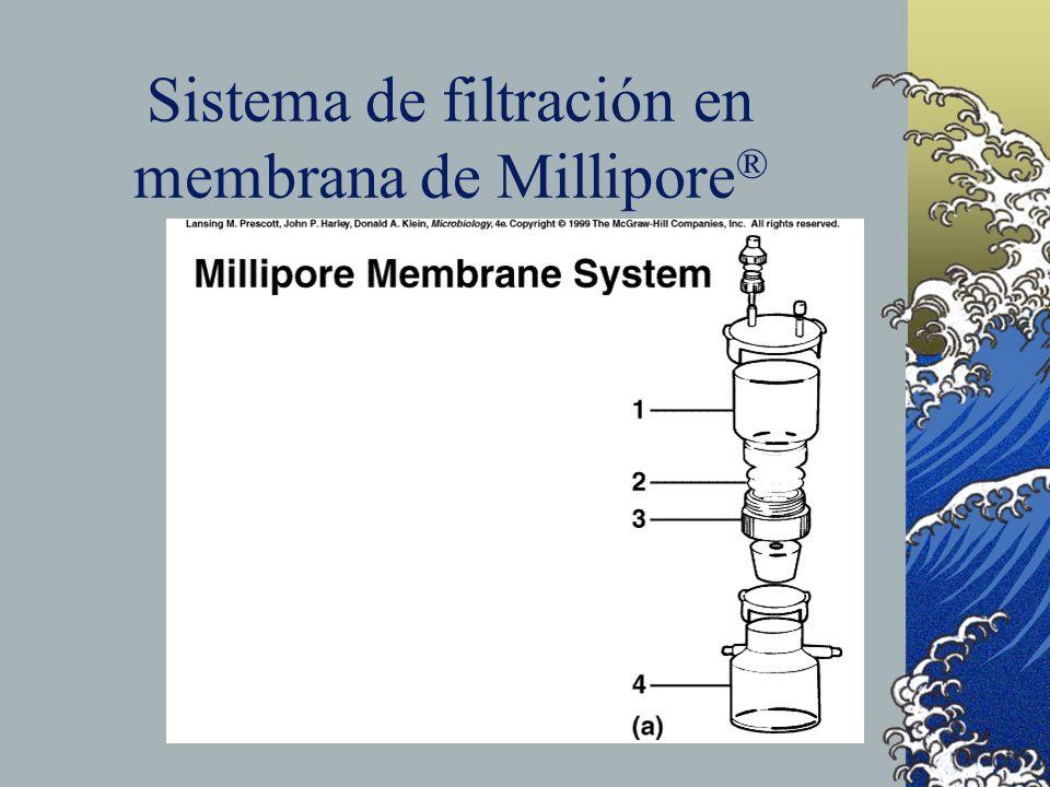 Sistema de filtración en membrana de Millipore ®