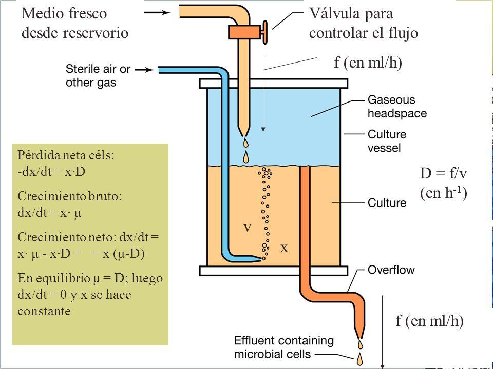 Medio fresco desde reservorio Válvula para controlar el flujo f (en ml/h) v x Pérdida neta céls: -dx/dt = x·D Crecimiento bruto: dx/dt = x· μ Crecimie