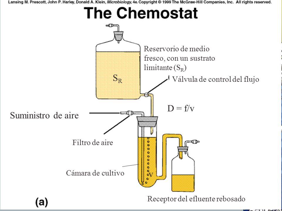 SRSR D = f/v v Reservorio de medio fresco, con un sustrato limitante (S R ) Válvula de control del flujo Suministro de aire Filtro de aire Cámara de c