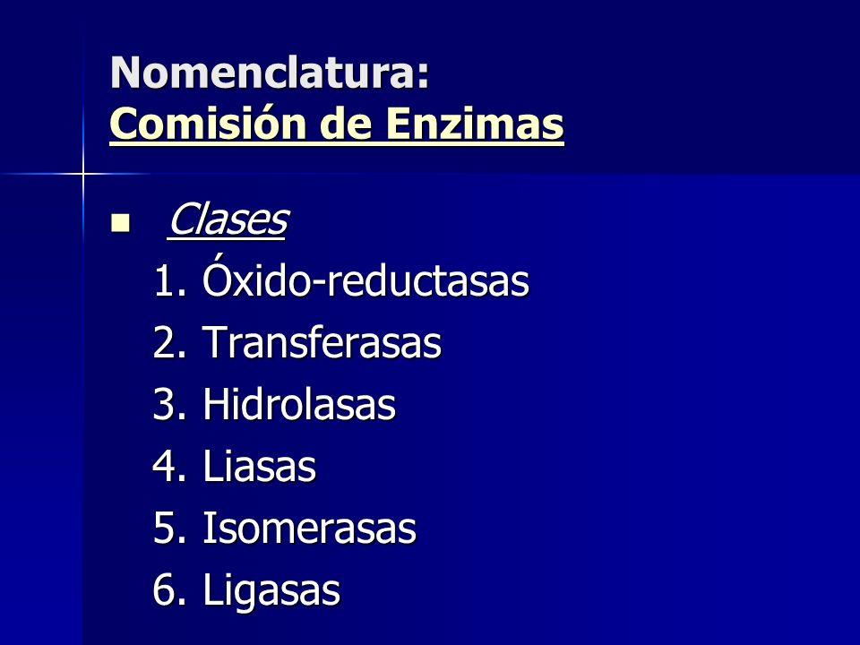 Clases Clases 1.Óxido-reductasas 2.Transferasas 3.Hidrolasas 4.Liasas 5.Isomerasas 6.Ligasas Nomenclatura: Comisión de Enzimas Comisión de Enzimas Com
