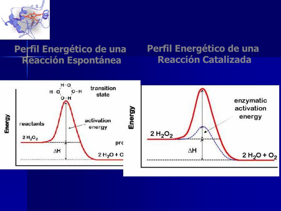 Perfil Energético de una Reacción Espontánea Perfil Energético de una Reacción Catalizada