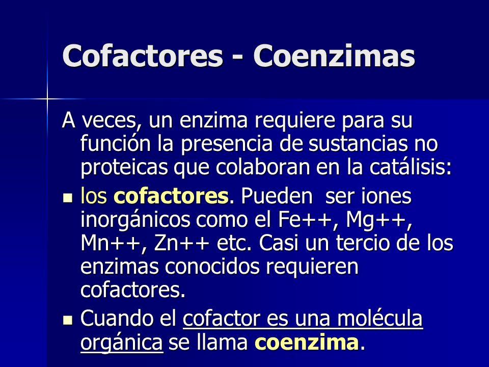 Cofactores - Coenzimas A veces, un enzima requiere para su función la presencia de sustancias no proteicas que colaboran en la catálisis: los cofactor