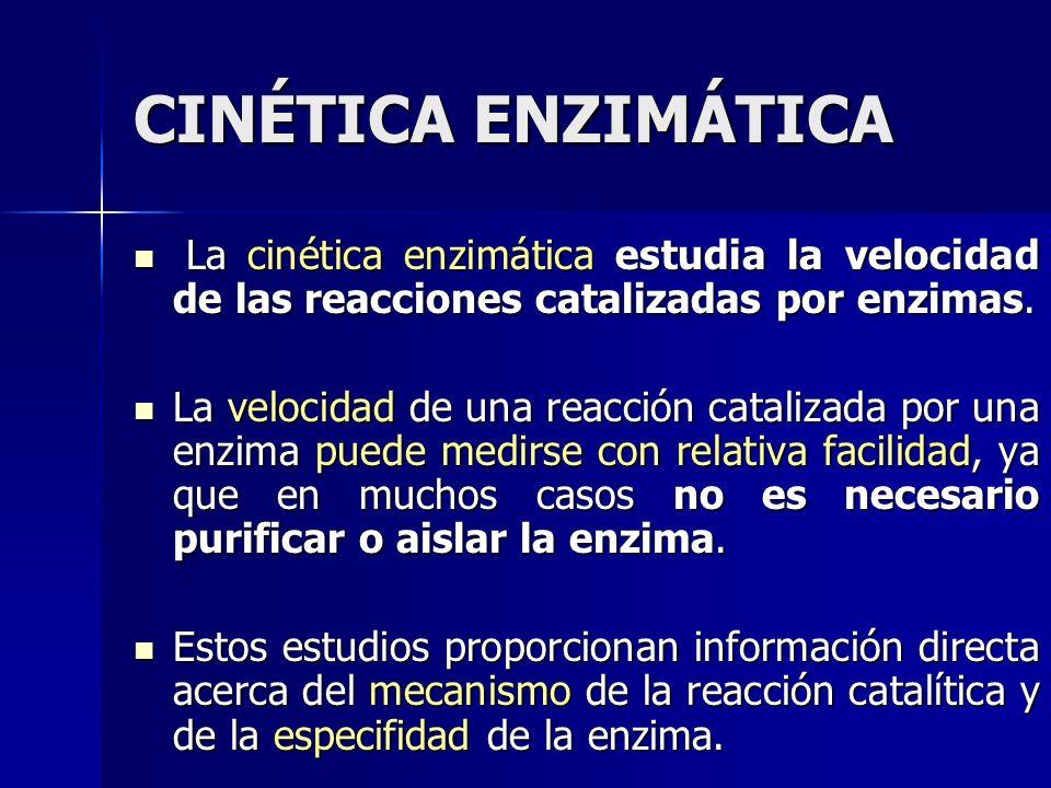 CINÉTICA ENZIMÁTICA La cinética enzimática estudia la velocidad de las reacciones catalizadas por enzimas. La cinética enzimática estudia la velocidad