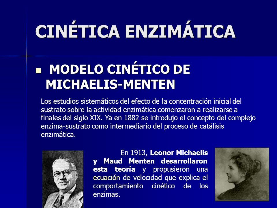 CINÉTICA ENZIMÁTICA MODELO CINÉTICO DE MICHAELIS-MENTEN MODELO CINÉTICO DE MICHAELIS-MENTEN Los estudios sistemáticos del efecto de la concentración i