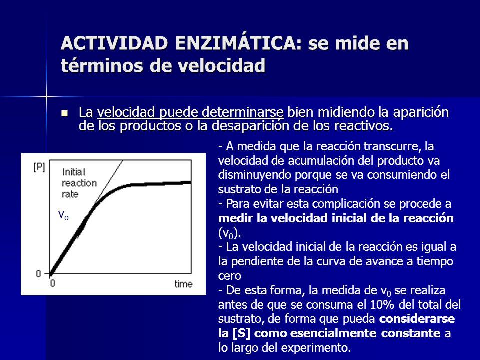 ACTIVIDAD ENZIMÁTICA: se mide en términos de velocidad La velocidad puede determinarse bien midiendo la aparición de los productos o la desaparición d