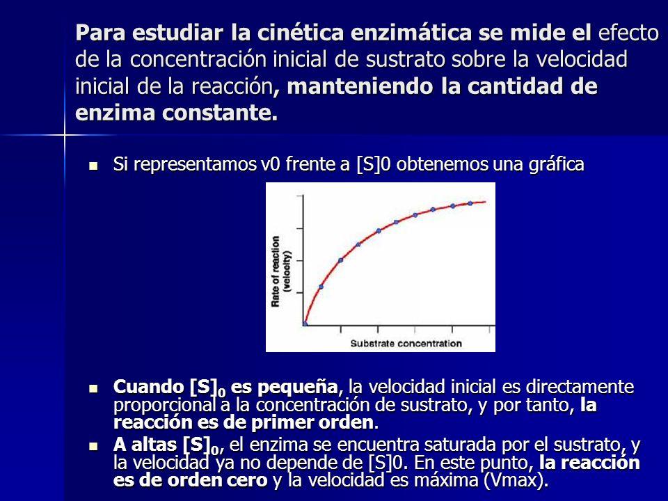 Para estudiar la cinética enzimática se mide el efecto de la concentración inicial de sustrato sobre la velocidad inicial de la reacción, manteniendo
