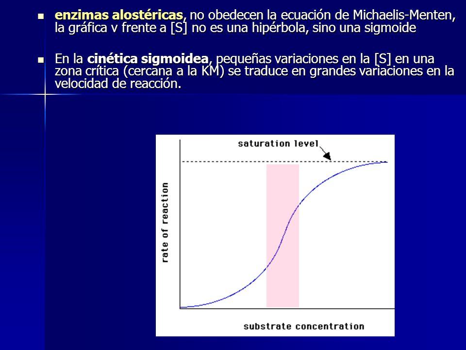 enzimas alostéricas, no obedecen la ecuación de Michaelis-Menten, la gráfica v frente a [S] no es una hipérbola, sino una sigmoide enzimas alostéricas