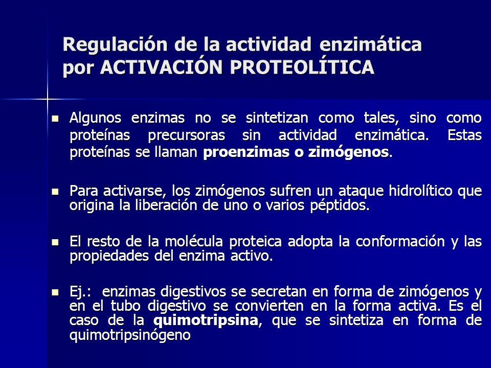 Regulación de la actividad enzimática por ACTIVACIÓN PROTEOLÍTICA Algunos enzimas no se sintetizan como tales, sino como proteínas precursoras sin act