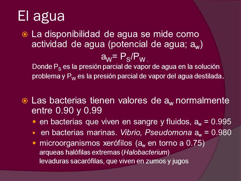 El agua La disponibilidad de agua se mide como actividad de agua (potencial de agua; a w ) a W = P S /P W. Donde P S es la presión parcial de vapor de