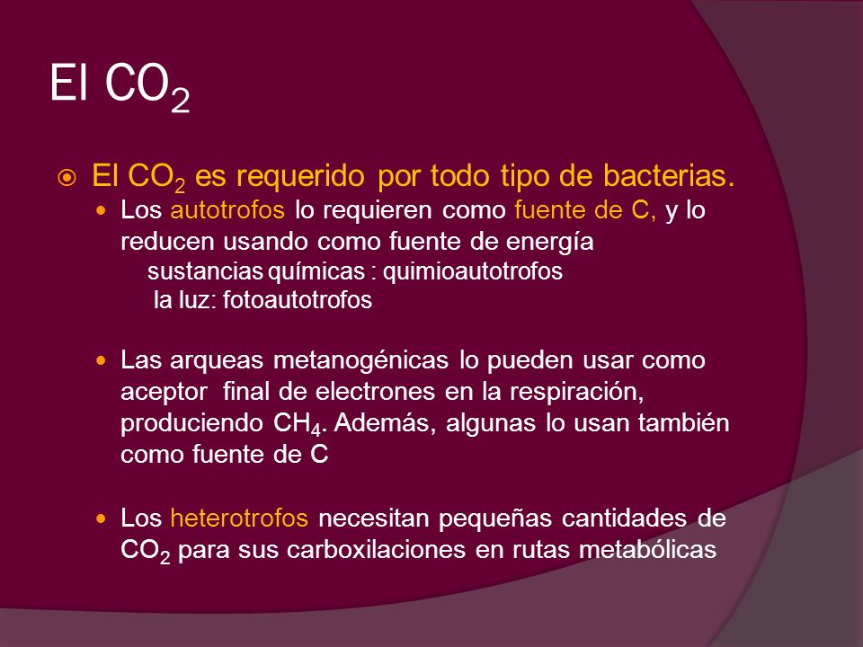 El CO 2 El CO 2 es requerido por todo tipo de bacterias. Los autotrofos lo requieren como fuente de C, y lo reducen usando como fuente de energía sust