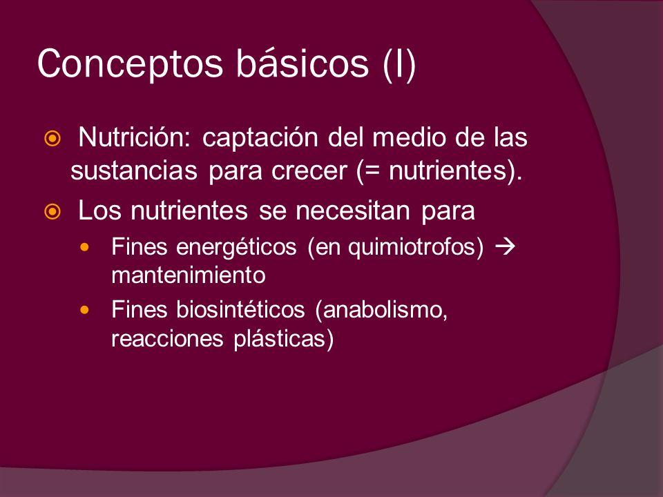Conceptos básicos (I) Nutrición: captación del medio de las sustancias para crecer (= nutrientes). Los nutrientes se necesitan para Fines energéticos