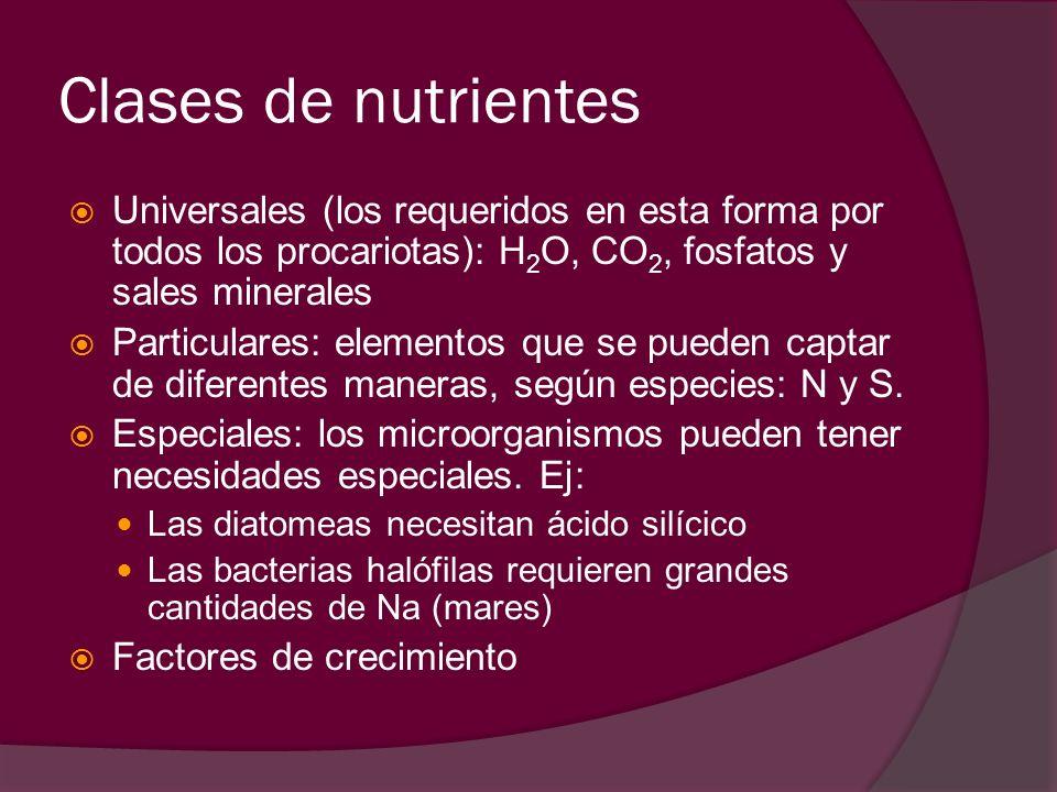 Clases de nutrientes Universales (los requeridos en esta forma por todos los procariotas): H 2 O, CO 2, fosfatos y sales minerales Particulares: eleme