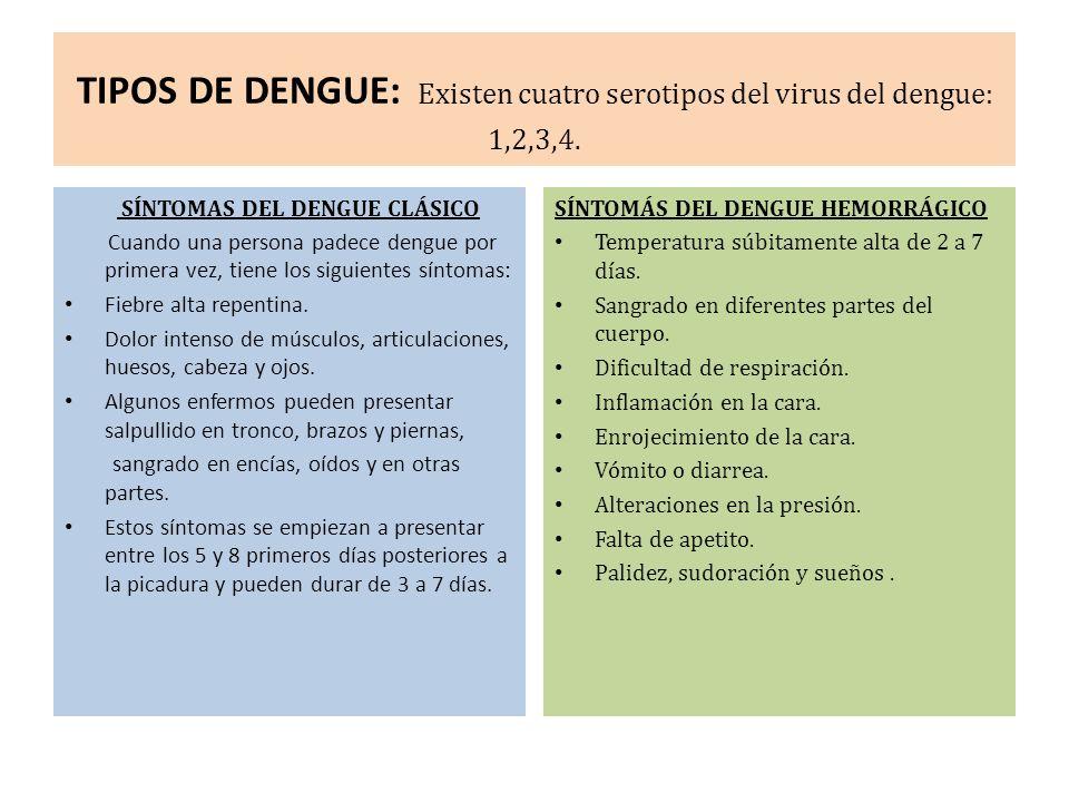 TIPOS DE DENGUE: Existen cuatro serotipos del virus del dengue: 1,2,3,4. SÍNTOMAS DEL DENGUE CLÁSICO Cuando una persona padece dengue por primera vez,