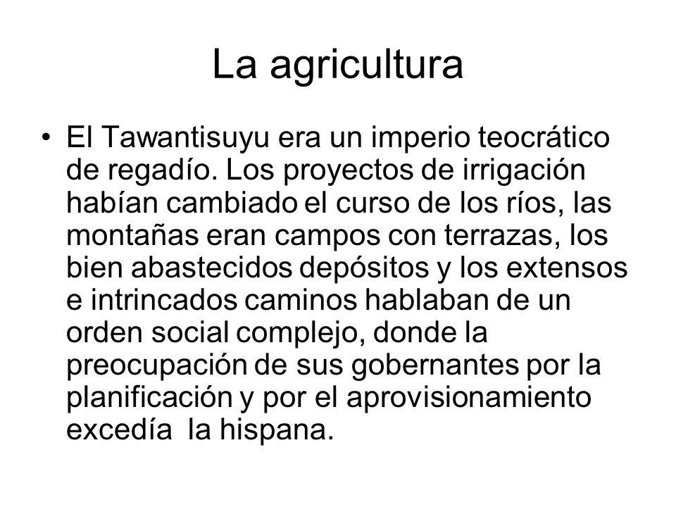 La agricultura El Tawantisuyu era un imperio teocrático de regadío. Los proyectos de irrigación habían cambiado el curso de los ríos, las montañas era