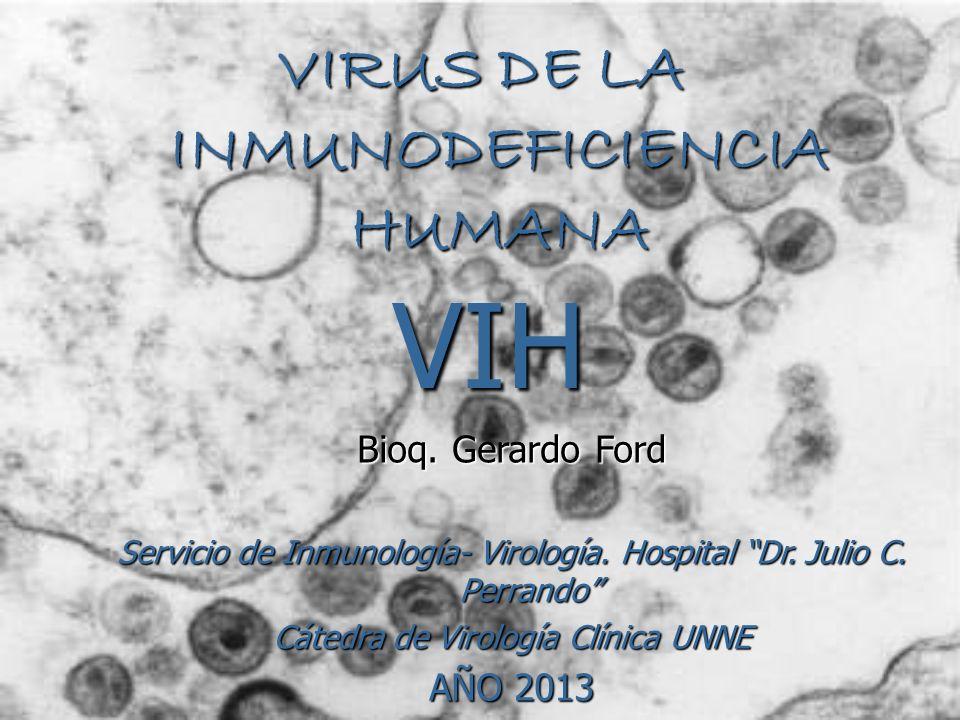 VIH VIRUS DE LA INMUNODEFICIENCIA HUMANA Bioq. Gerardo Ford Servicio de Inmunología- Virología. Hospital Dr. Julio C. Perrando Cátedra de Virología Cl