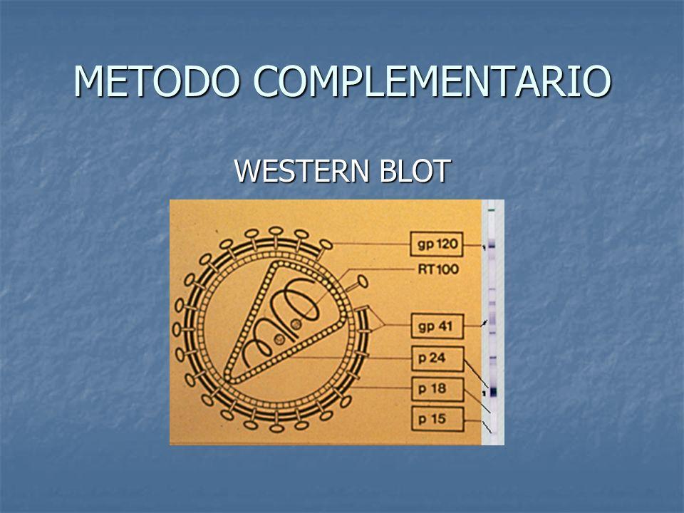 METODO COMPLEMENTARIO WESTERN BLOT