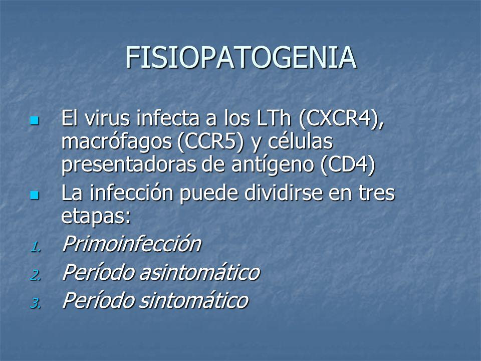FISIOPATOGENIA El virus infecta a los LTh (CXCR4), macrófagos (CCR5) y células presentadoras de antígeno (CD4) El virus infecta a los LTh (CXCR4), mac
