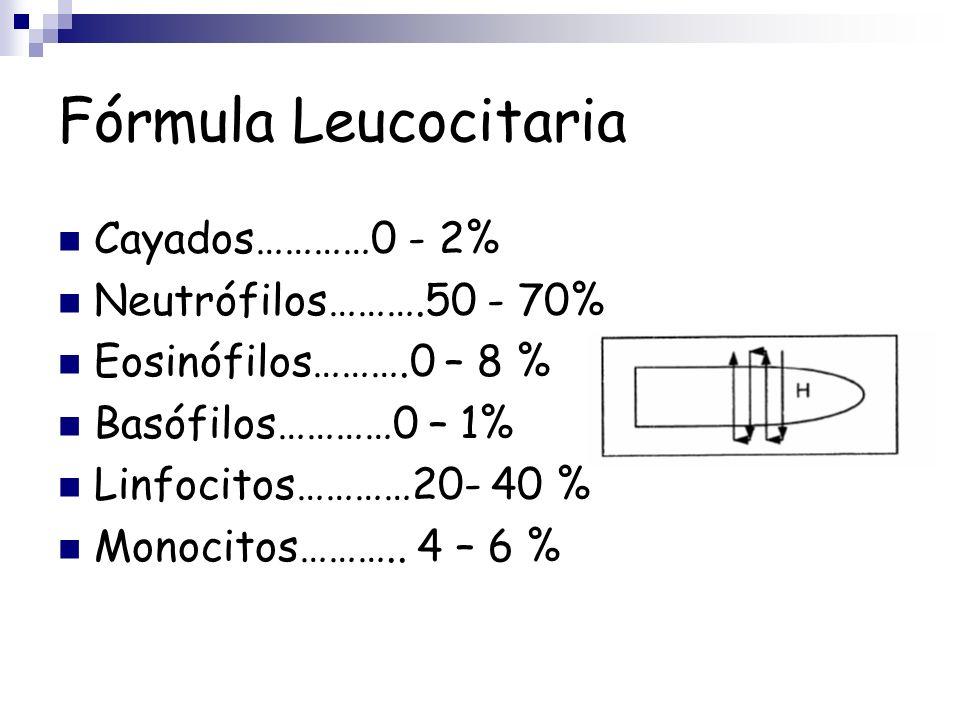 Fórmula Leucocitaria Cayados…………0 - 2% Neutrófilos……….50 - 70% Eosinófilos……….0 – 8 % Basófilos…………0 – 1% Linfocitos…………20- 40 % Monocitos……….. 4 – 6