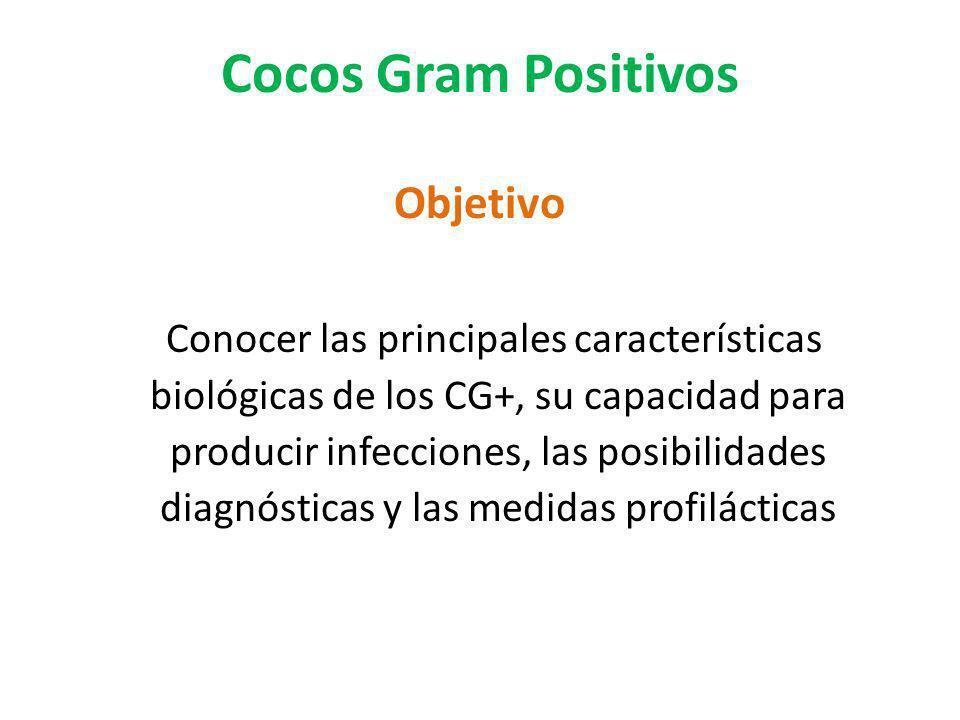 Cocos Gram Positivos Objetivo Conocer las principales características biológicas de los CG+, su capacidad para producir infecciones, las posibilidades