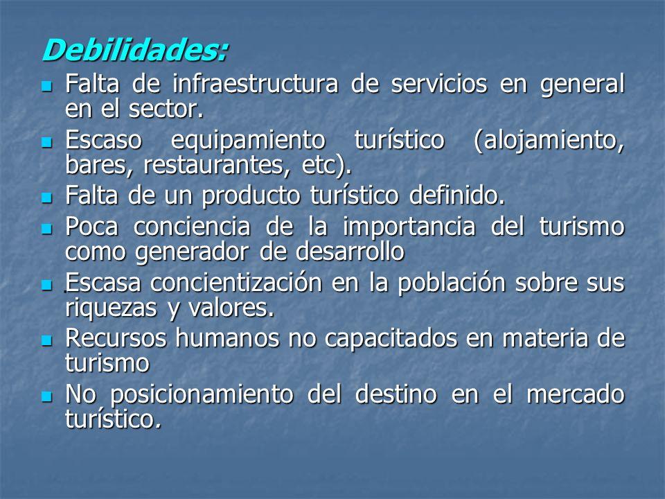 . Debilidades: Falta de infraestructura de servicios en general en el sector. Falta de infraestructura de servicios en general en el sector. Escaso eq