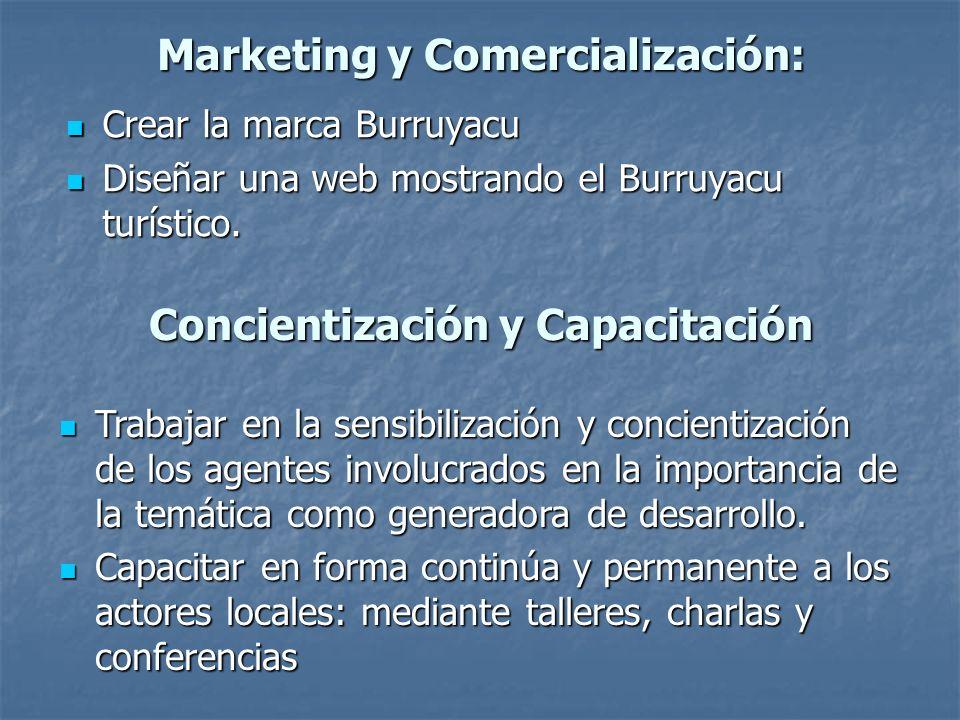 Marketing y Comercialización: Crear la marca Burruyacu Crear la marca Burruyacu Diseñar una web mostrando el Burruyacu turístico. Diseñar una web most