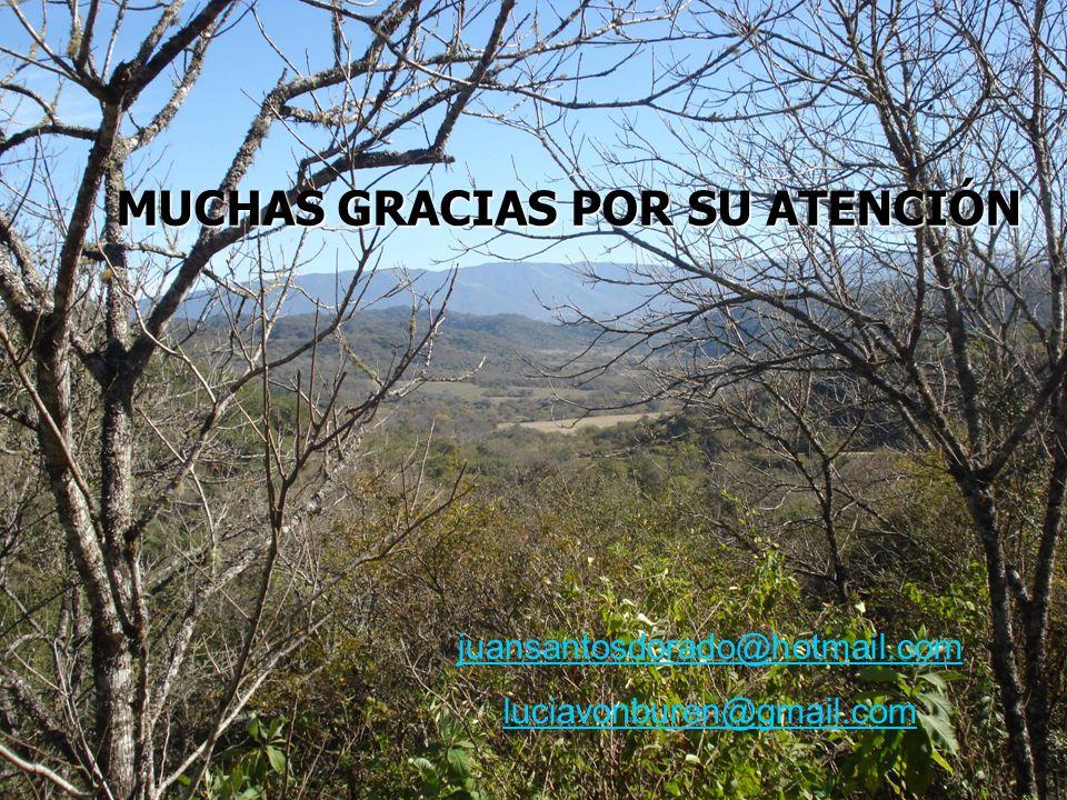 MUCHAS GRACIAS POR SU ATENCIÓN juansantosdorado@hotmail.com luciavonburen@gmail.com