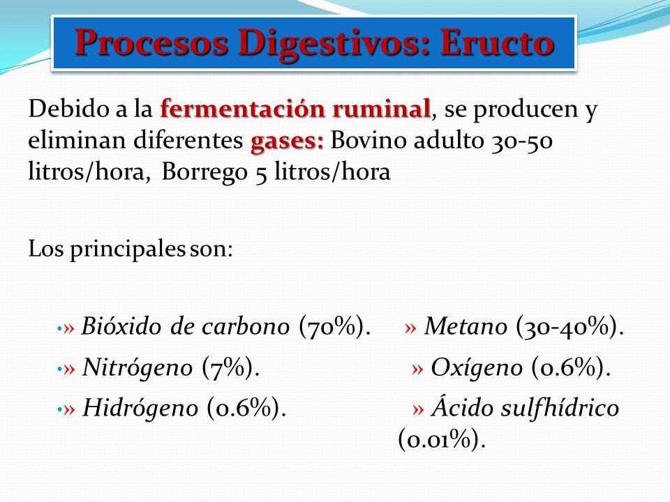 fermentación ruminal gases: Debido a la fermentación ruminal, se producen y eliminan diferentes gases: Bovino adulto 30-50 litros/hora, Borrego 5 litr