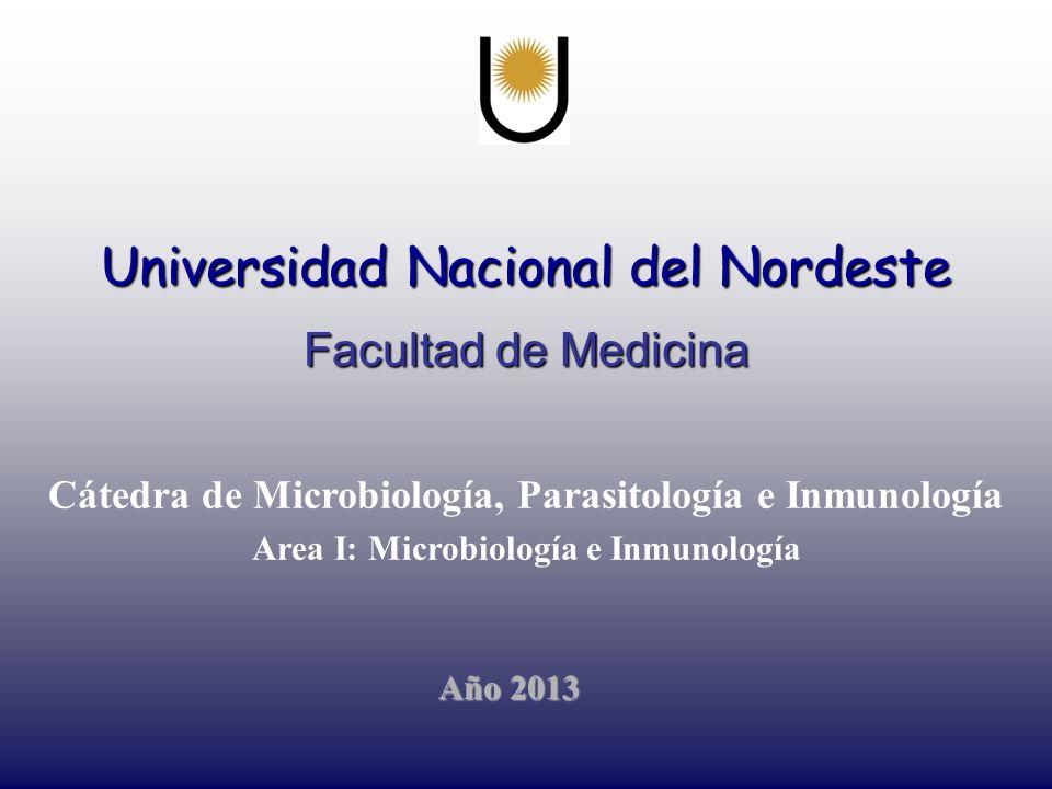 Universidad Nacional del Nordeste Facultad de Medicina Cátedra de Microbiología, Parasitología e Inmunología Area I: Microbiología e Inmunología Año 2