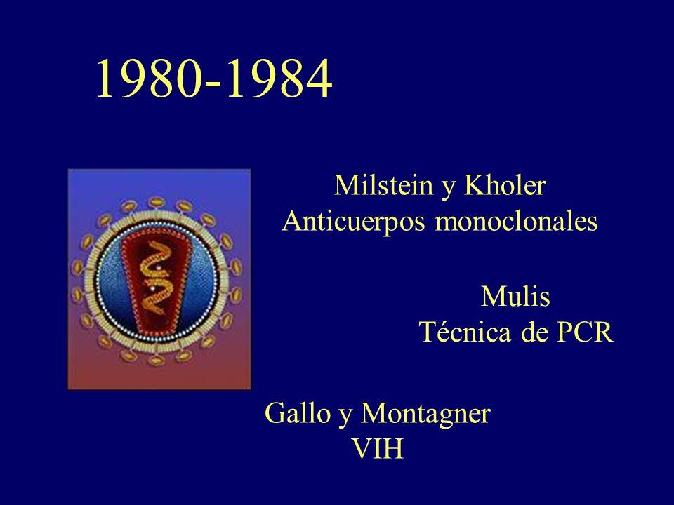1980-1984 Milstein y Kholer Anticuerpos monoclonales Mulis Técnica de PCR Gallo y Montagner VIH