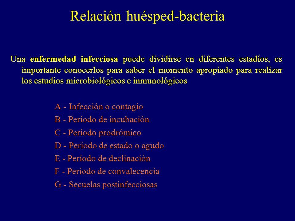 Una enfermedad infecciosa puede dividirse en diferentes estadíos, es importante conocerlos para saber el momento apropiado para realizar los estudios