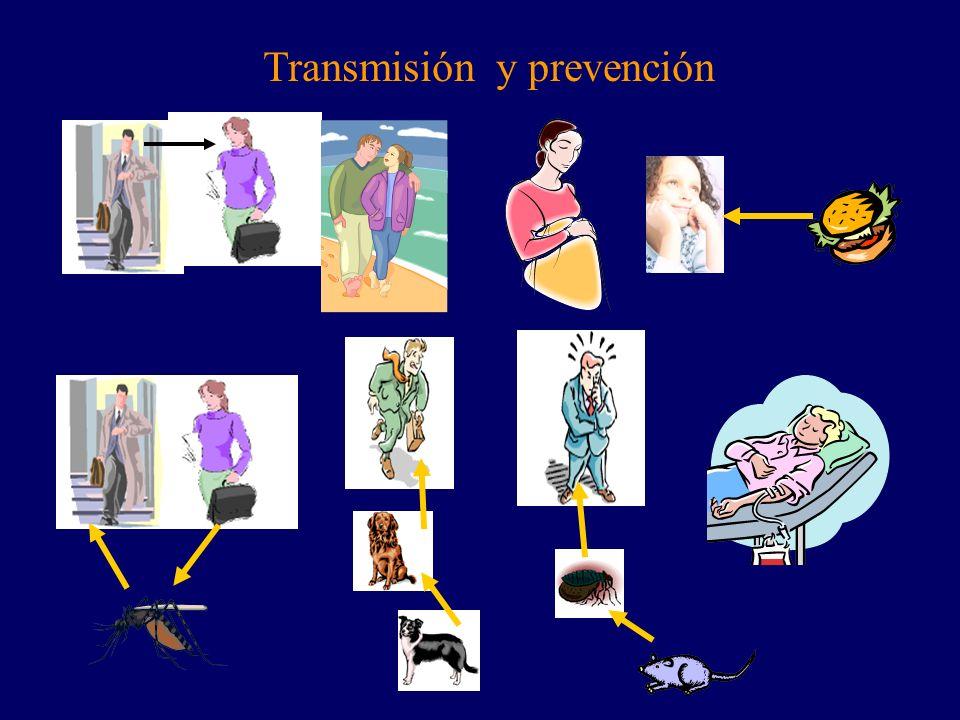 Transmisión y prevención