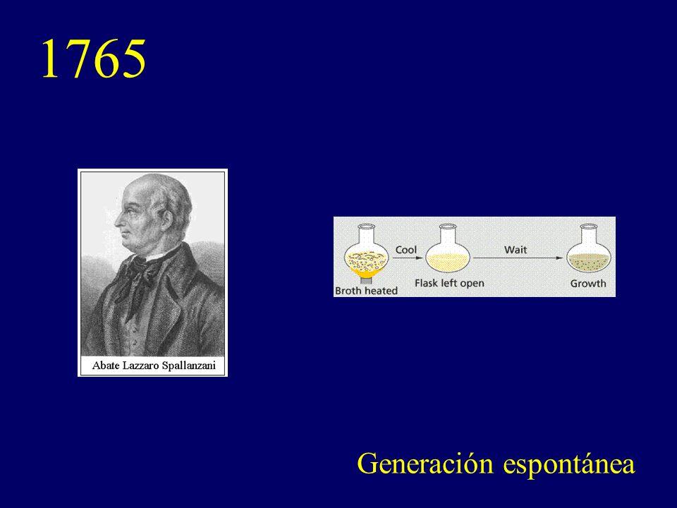 1765 Generación espontánea