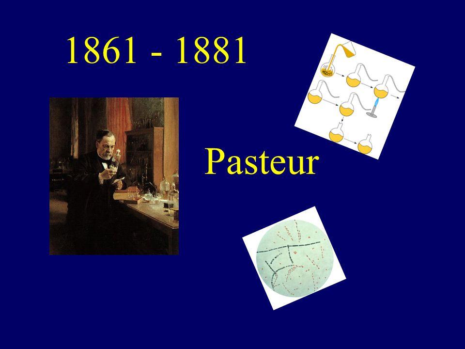 Pasteur 1861 - 1881