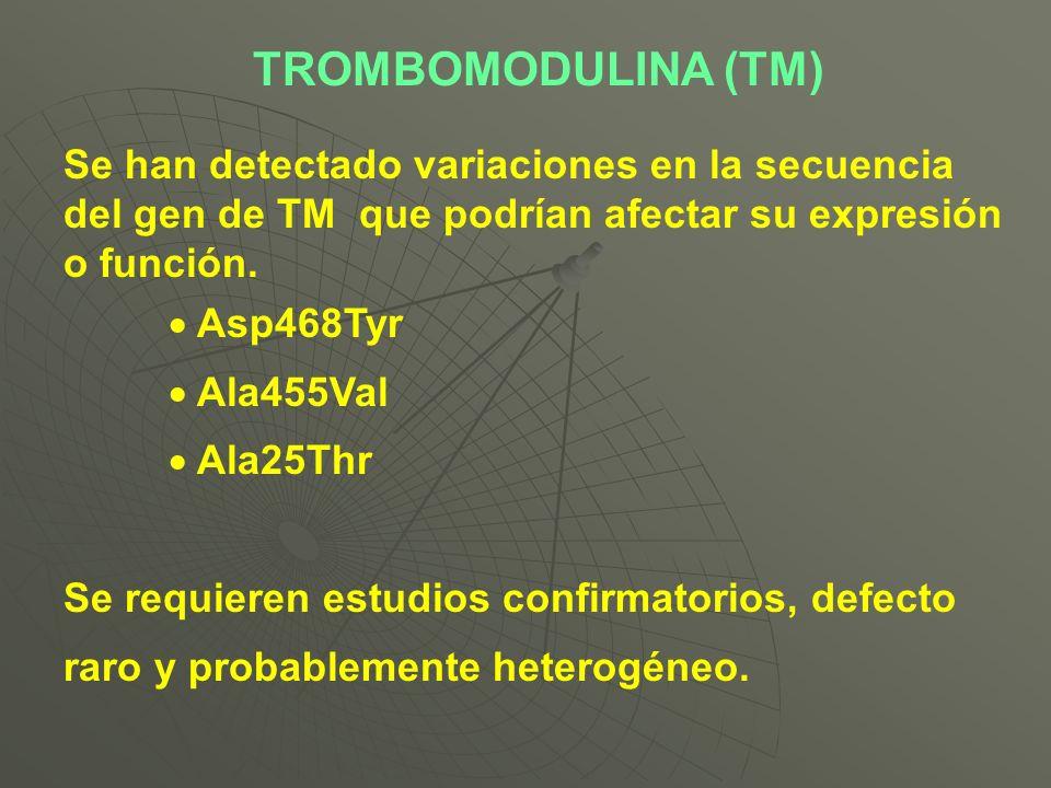TROMBOMODULINA (TM) Se han detectado variaciones en la secuencia del gen de TM que podrían afectar su expresión o función. Asp468Tyr Ala455Val Ala25Th
