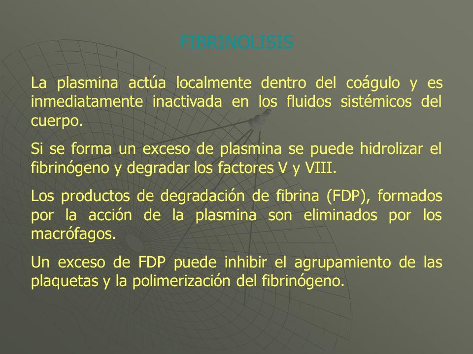 La plasmina actúa localmente dentro del coágulo y es inmediatamente inactivada en los fluidos sistémicos del cuerpo. Si se forma un exceso de plasmina