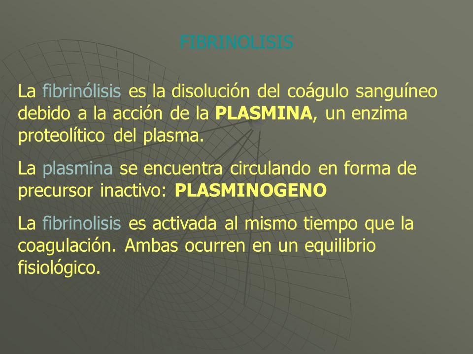 La fibrinólisis es la disolución del coágulo sanguíneo debido a la acción de la PLASMINA, un enzima proteolítico del plasma. La plasmina se encuentra