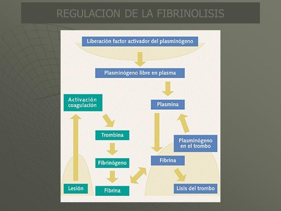 REGULACION DE LA FIBRINOLISIS