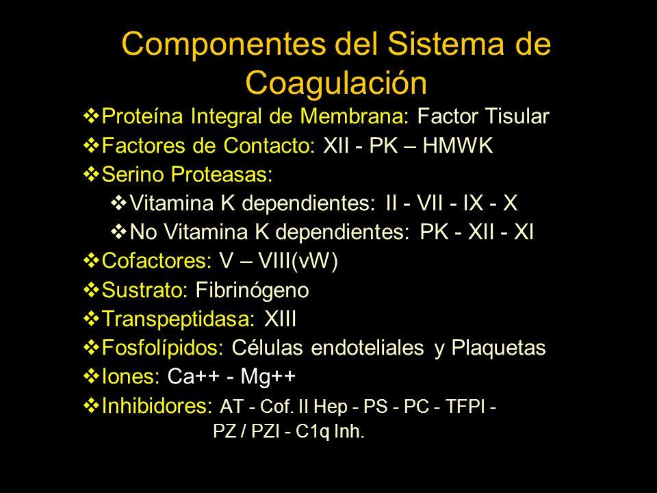 Componentes del Sistema de Coagulación Proteína Integral de Membrana: Factor Tisular Factores de Contacto: XII - PK – HMWK Serino Proteasas: Vitamina