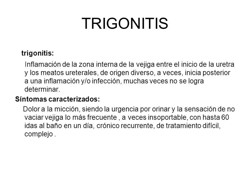 TRIGONITIS trigonitis: Inflamación de la zona interna de la vejiga entre el inicio de la uretra y los meatos ureterales, de origen diverso, a veces, i