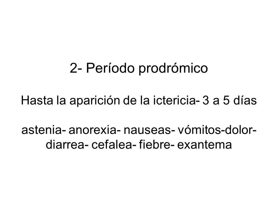 2- Período prodrómico Hasta la aparición de la ictericia- 3 a 5 días astenia- anorexia- nauseas- vómitos-dolor- diarrea- cefalea- fiebre- exantema